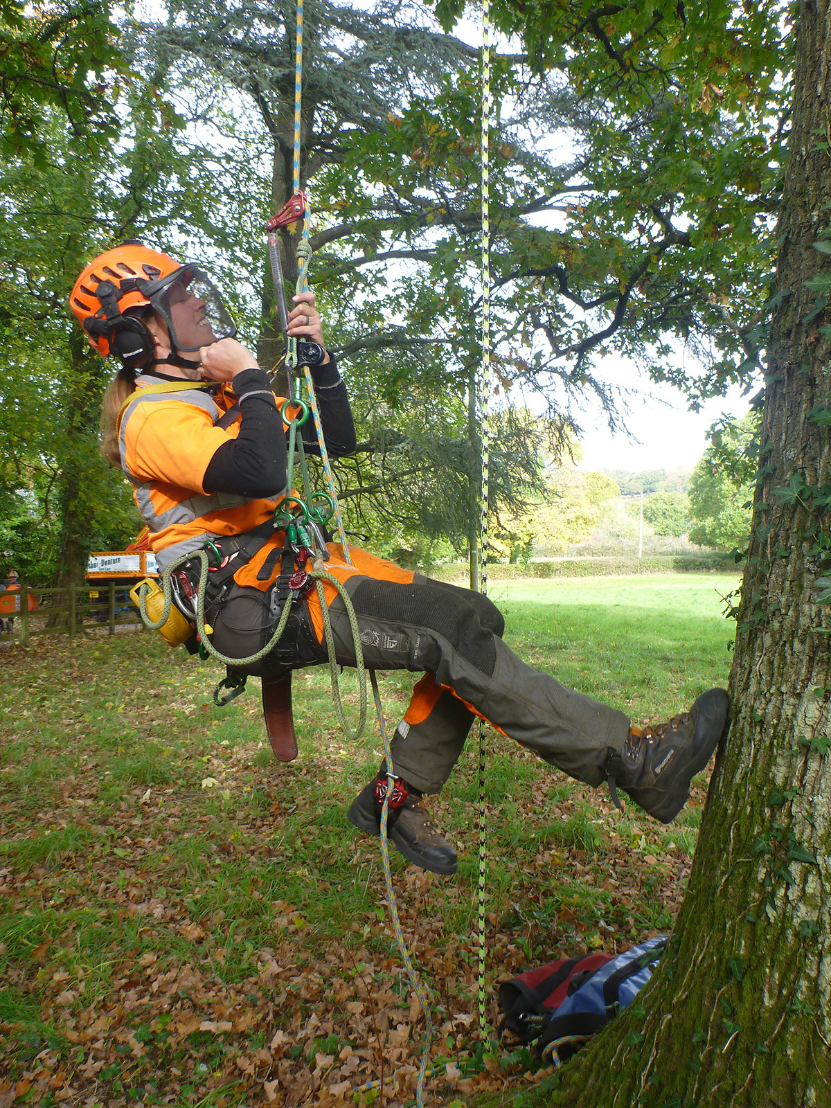 Tree Care Company Uses Ninja™ Foot Ascender to Climb Faster and
